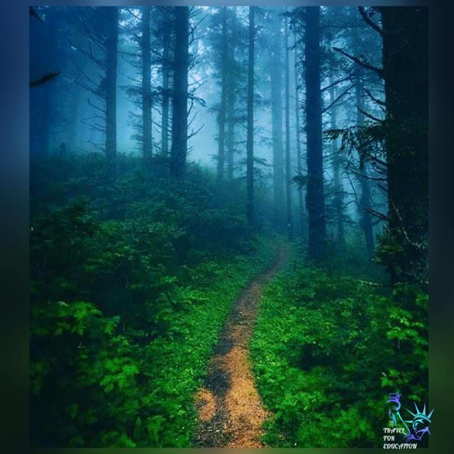 මන්දාරම් අඳුරින් හැඩ වූ - මන්දාරම්නුවර 🥦🌳(Mandaram Nuwara🍃) - Your Choice Way