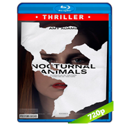 Animales nocturnos (2016) BRRip 720p Audio Dual Latino-Ingles