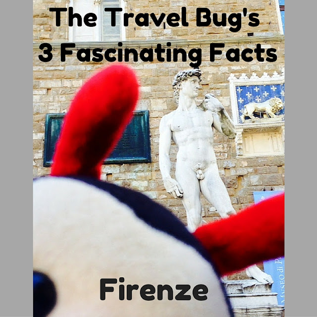 The Travel Bug's 3 Fascinating Facts About Florence