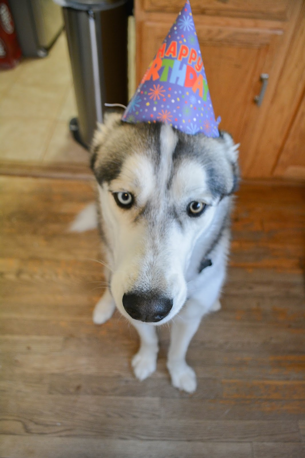 Oliver's 2nd Birthday