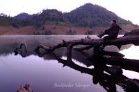 Pagi Hari di Ranu Kumbolo Gunung Semeru