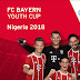 Nigeria — FC Bayern Youth Cup Tournament National Finals To Take Place In Abuja