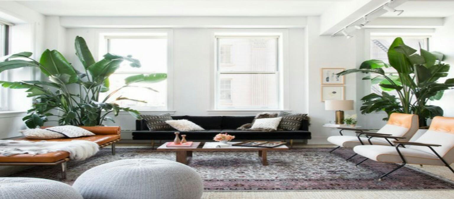 Meletakan Tanaman Pada Living Room