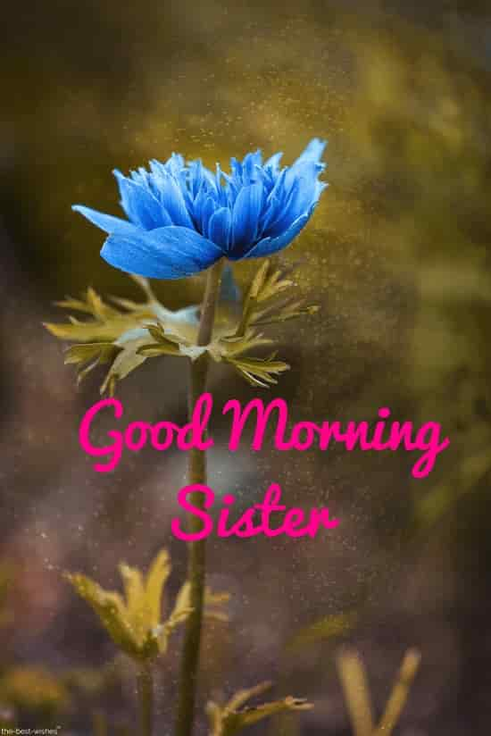 good morning to you sister