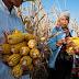 Sector agroalimentario necesita mayor presencia en internet