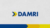 Perusahaan Umum DAMRI - Penerimaan Untuk IT Developer, IT Support  January 2020