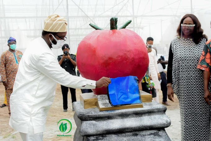 Osun State Government To Create 2000 Direct Jobs In The Agricultural Sector
