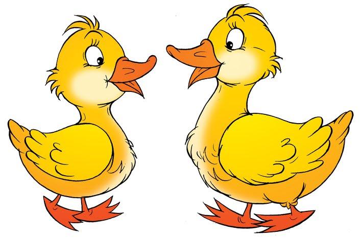 Resultado de imagen de dibujo dos patos