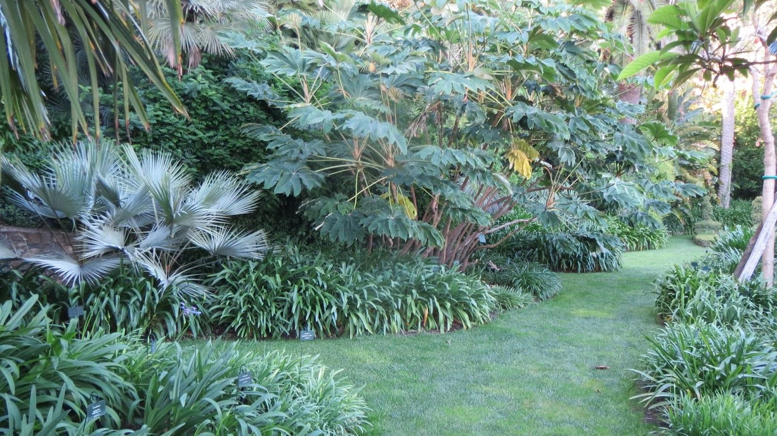 hortibus voyage vmf 64 palais et jardins prives de genes et de la riviera. Black Bedroom Furniture Sets. Home Design Ideas
