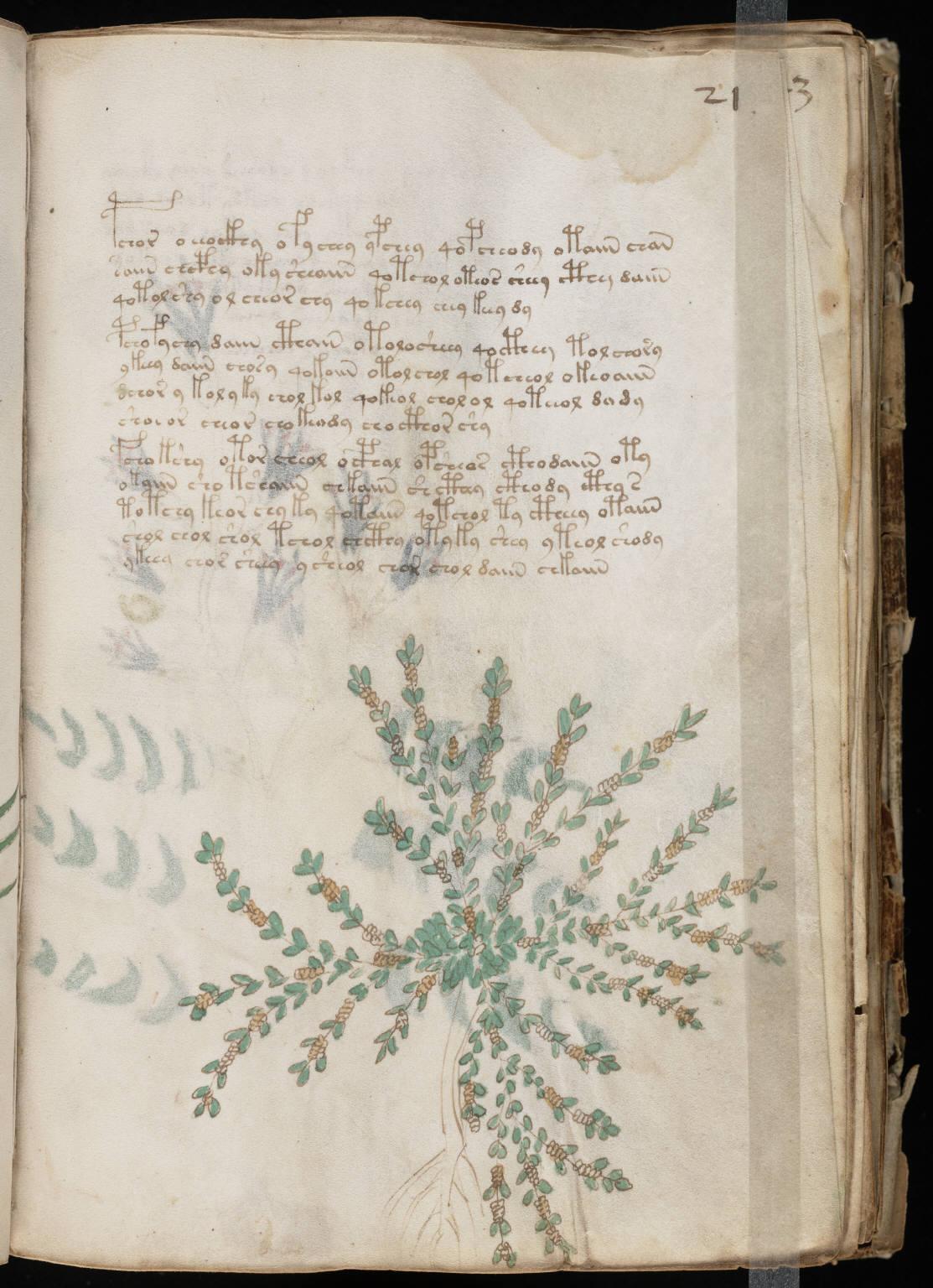 manuscrito041