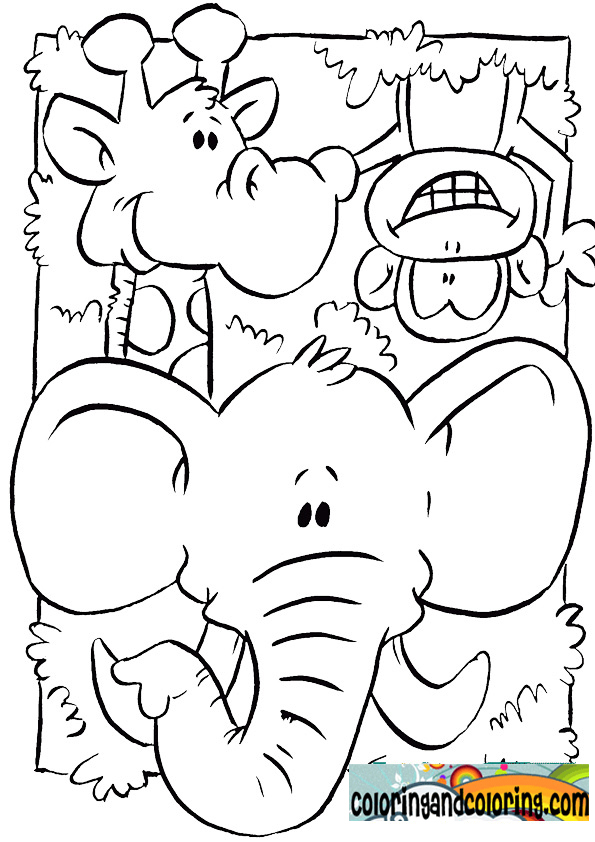 The gallery for coloring pages baby jungle animals for Safari animal coloring pages
