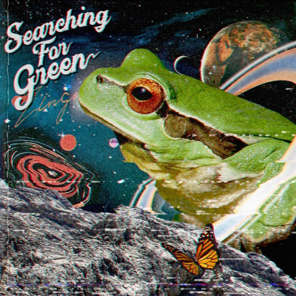 ZINGO – Searching for green – Single