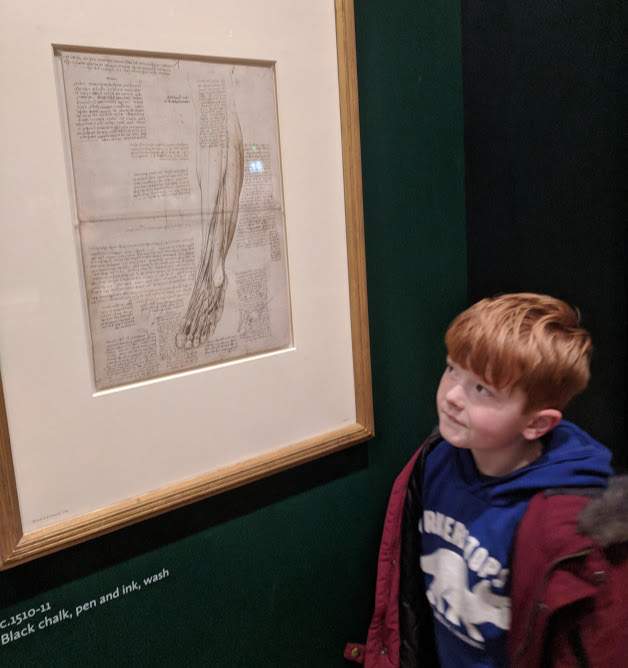 5 Reasons to Visit the Leonardo da Vinci: A Life in Drawing Exhibition at Sunderland Museum & Winter Gardens with Kids - leg muscle sketch