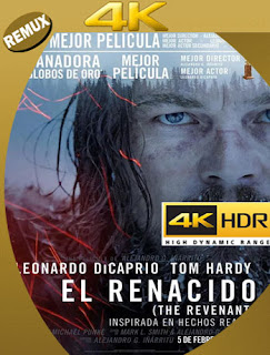 El Renacido (2015) REMUX [4K HDR] Latino [Google Drive] Panchirulo