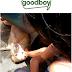 Shopee Sale Alert : Good,Healthy Doggie Treats | GoodBoy Dog Food