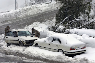 A storm which consists of snow and rain that has been happening in Lebanon for five days has left an 8-year-old Syrian girl dead.