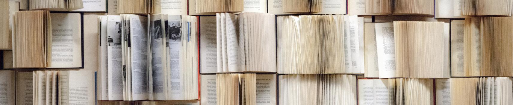 Tekstoterapia kulturowa. Ścieżka kompetencji