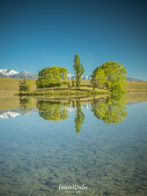 New Zealand, NZ, Twizel, Loch Cameron, Reflections