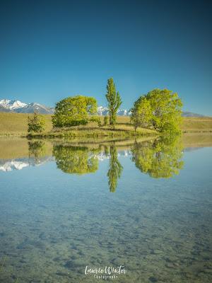 New Zealand, NZ, Twizel, Loch Cameron, Reflections