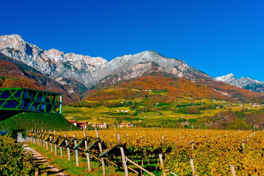 Cantine Tramin Alto Adige