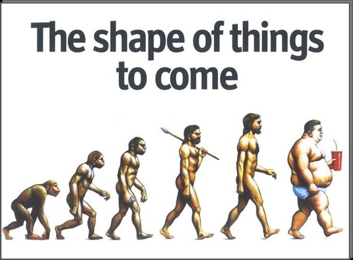 Junk Food Evolution