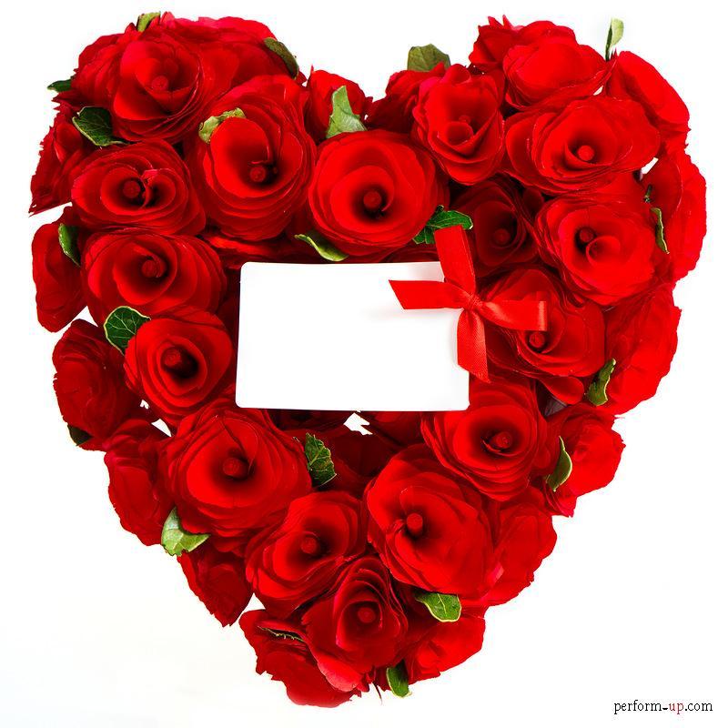 صور ورود أجمل صور الورود والزهور ملونة أحمر 2020 صورك