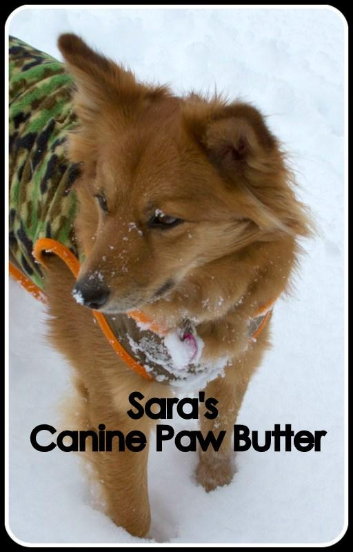 Paw Wax,  Paw Butter,  Canine Paws, Cracked Pads, Damaged pads, Dog boots, Mushers Secret