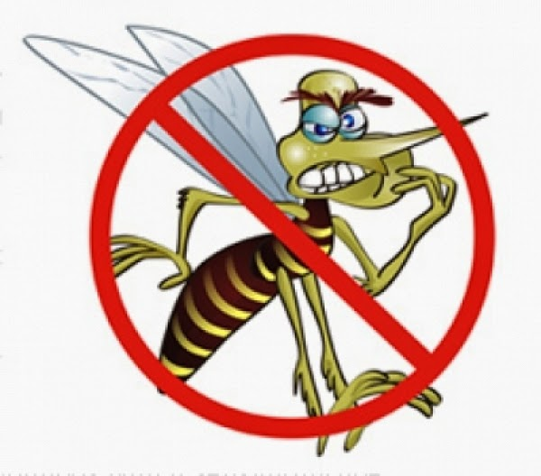 Prefeitura de Delmiro Gouveia inicia levantamento do índice de infestação da Dengue