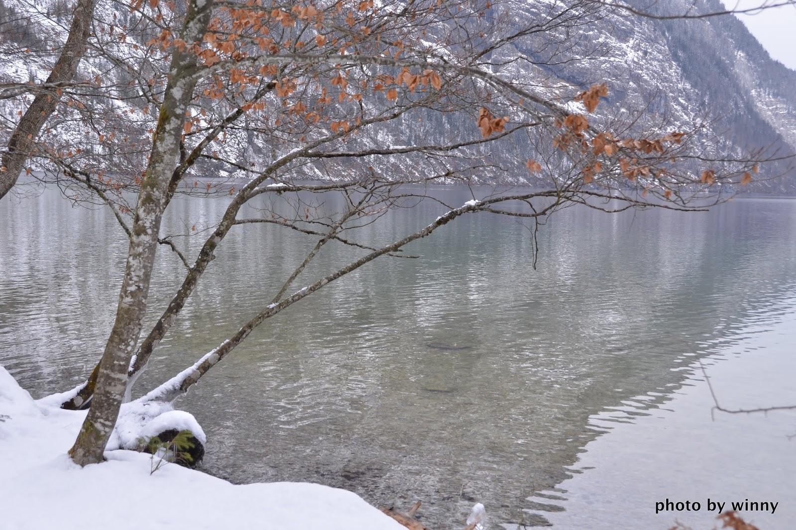 旅遊筆記: Germany ﹣﹣﹣Königssee 德國 國王湖