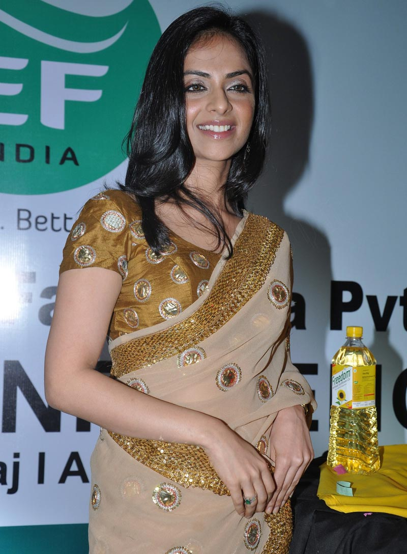 Richa Pallod Latest Photos In Hot Saree
