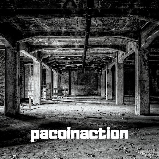 pacoinaction - Pained Sounds (Beat)