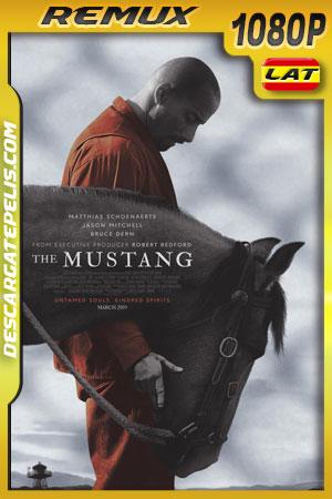 The Mustang (2019) Remux 1080p Latino – Ingles