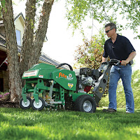 Lawn Overseeding Techniques