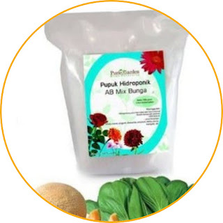 Purie Garden Hydroponic Fertilizer AB Mix Flowers Come on hydroponics with Purie Garden. This fertilizer contains micro and macro nutrients needed by plants to grow optimally. This product is easily soluble in water, making it easy to absorb and suitable for various types of ornamental flower plants. With its complete nutrient elements, Purie Garden fertilizer is effective in increasing the growth of other cultivated plants. Although the name of this product includes the word hydroponics, this fertilizer can also be used in soil and other media. Let's start planting in your yard with hydroponic techniques!