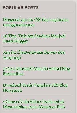 contoh widget website