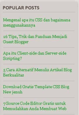 contoh widget website