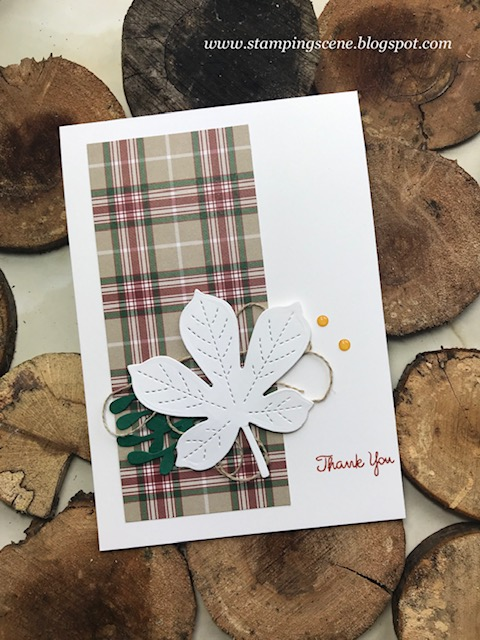 leaf thank you card using stampin up dsp and love of leaves