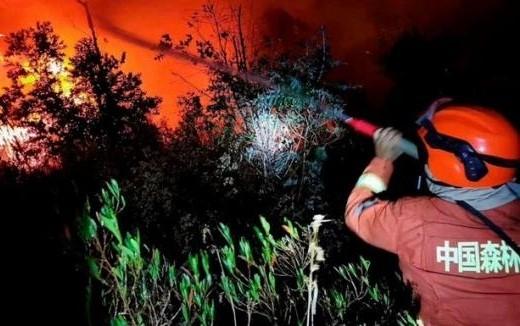 Chưa hết nạn corona, Trung Quốc gặp cháy rừng dữ dội, 18 lính cứu hỏa thiệt mạng