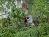 Astagfirullah! Tanda Kiamat Muncul di Tanah Abang Jakarta,Percaya Atau Tidak, Tapi Beginilah yang Terjadi