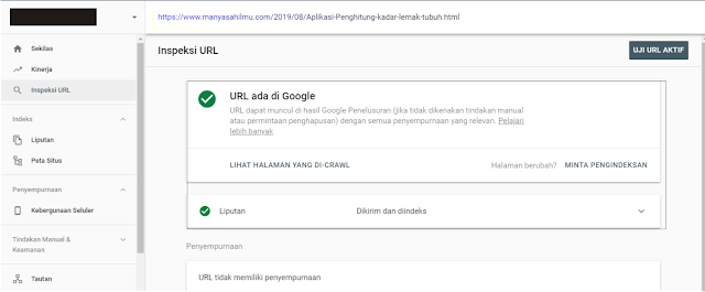 index artikel di Google search consule update