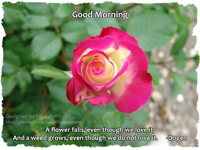 good-morning-wishes-image