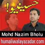 http://www.humaliwalayazadar.com/2016/10/mohd-nazim-bholu-nohay-2017_11.html
