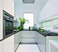 White narrow kitchen ideas with modern design features black countertops and indoor plants decoration