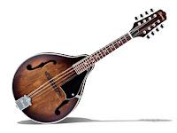 Düz sırtlı mandolin çalgısı