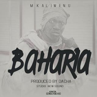 DOWNLOAD AUDIO | Mkaliwenu - Baharia Mp3