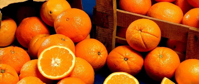Τρεις γυναίκες είχαν «ρημάξει» αγροκτήματα με πορτοκάλια σε Παναρίτι, Ανυφί και Μοναστηράκι στην Αργολίδα