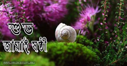 New Bengali Happy Jamai Sasthi Wallpaper