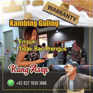 Catering Kambing Guling Siap Saji di Bandung, kambing guling di bandung, kambing guling bandung, kambing guling,