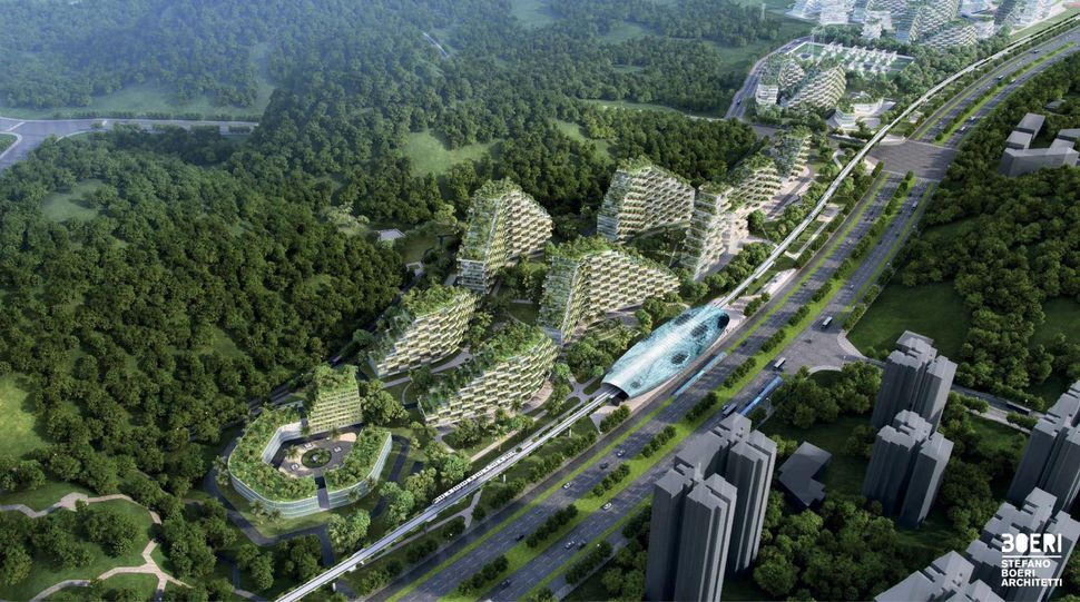 China, Forest City