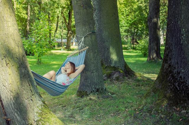 Przytul się do drzewa – na zdrowie